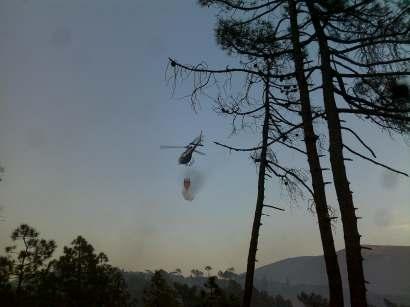 Gli incendi boschivi_2